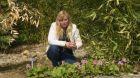 Co teď kvete na zahradě