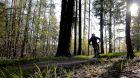Single trail Moravský kras