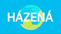 HCB Karviná - Talent tým Plzeňského kraje