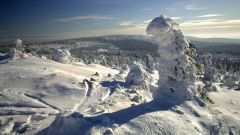 Sněhové zpravodajství