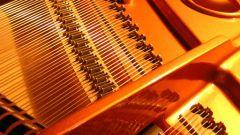 Evropské hudební kořeny: Alpský roh, hudební symbol Švýcarska