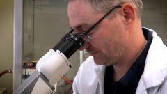Příběhy moderní medicíny – genová terapie na prahu nové éry